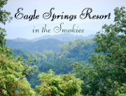 Eagle Springs Resort - Luxury Cabins in the Smokies